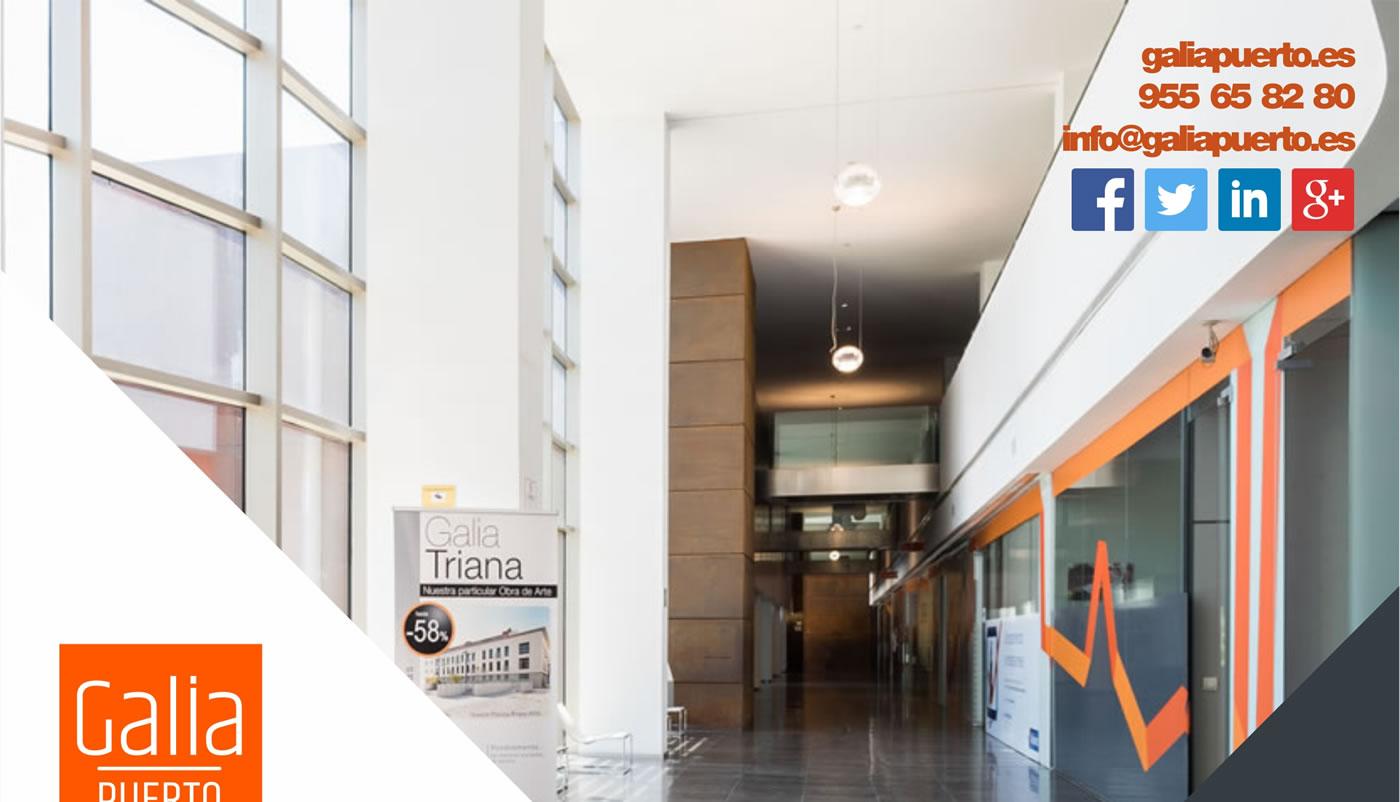 Galia Puerto: Promoción Despachos Profesionales - Agosto