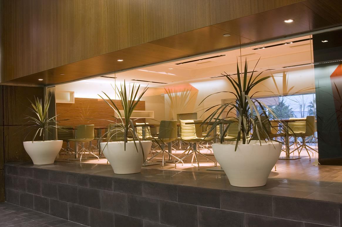 Galia Puerto - Cafetería
